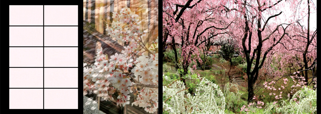 02_passages_printemps
