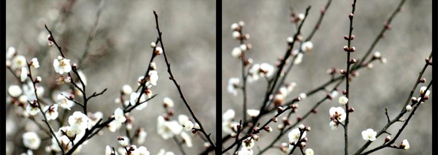 12_passages_hiver